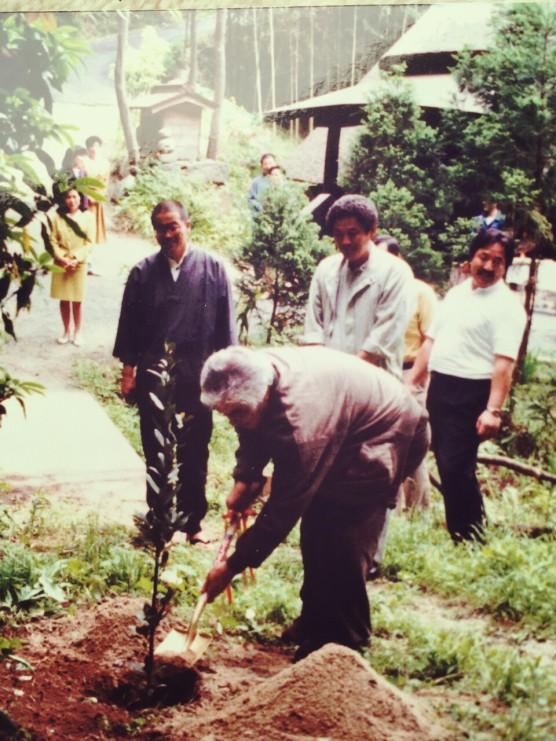 三國連太郎さんが植樹した月桂樹の木